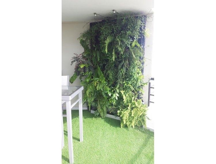 Home design paysage annuaire des entreprises for Entretien jardin noumea